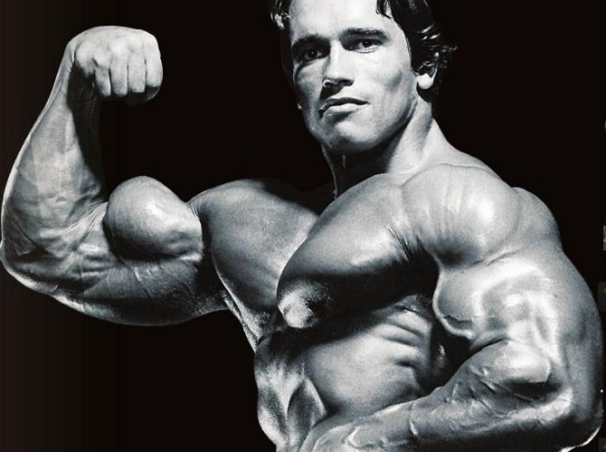 bicep tricep best arms workout ever