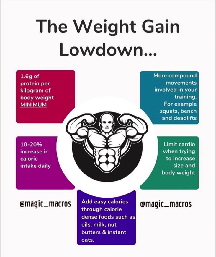 The Winter Bulk for Hard Gainers